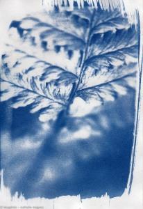 20150420 sur papier couché web