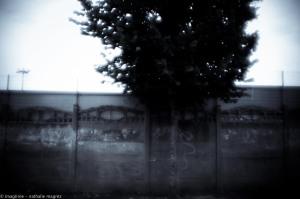 20150827 promenade avec Rimbaud en bandoulière web-3