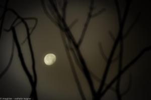 201608114 il y aura toujours la lune web-3